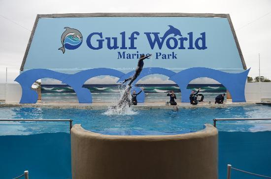 Gulf World Tickets Panama City Beach