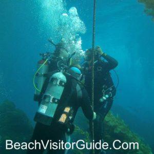 Malibu Divers